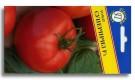 Сорт томата: Суперприз   f1