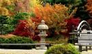 Текстура и энергетика японского сада