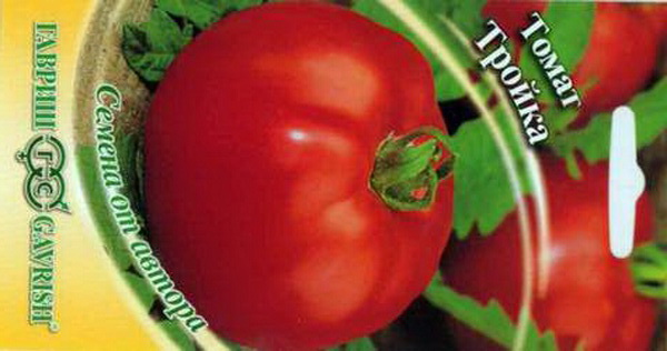 Сорт томата: Тройка