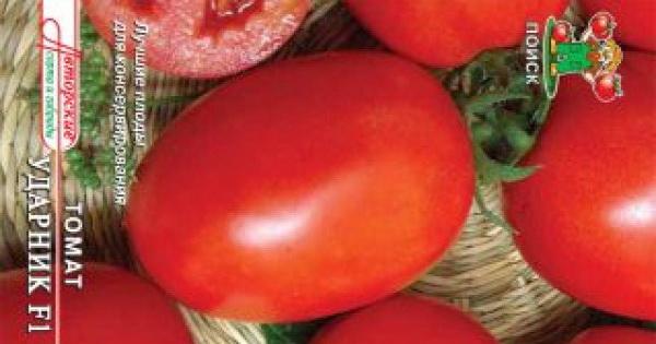Сорт томата: Ударник   f1