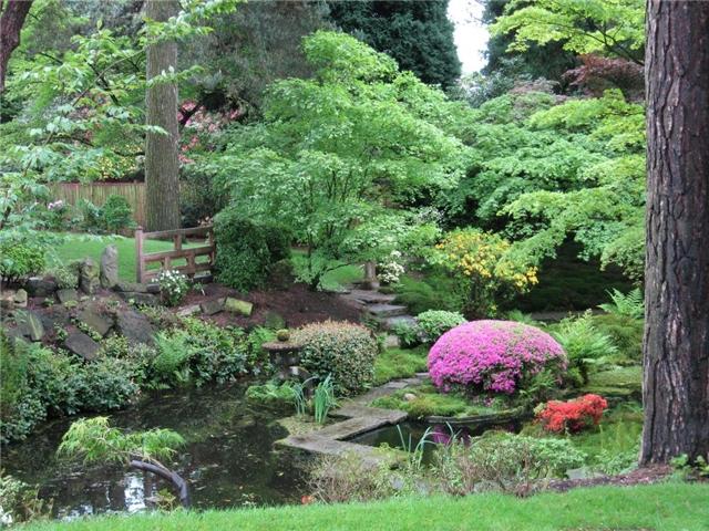 Уход за растениями японского сада