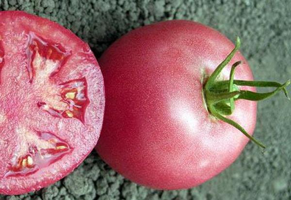 Сорт томата: Уникум   f1
