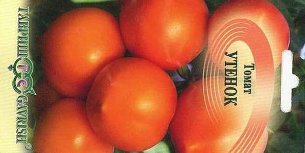 Сорт томата: Утенок