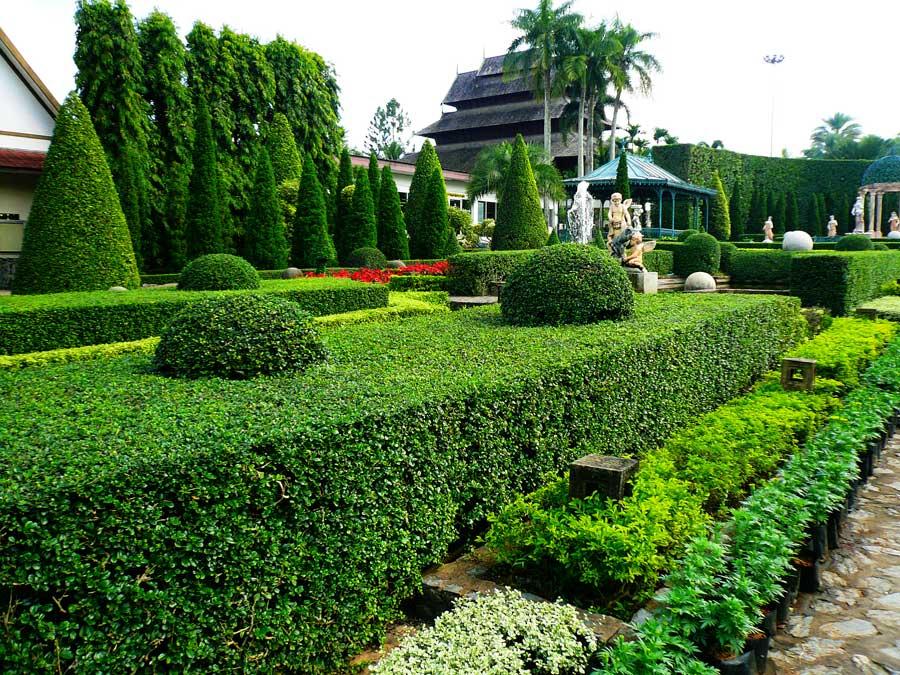 Живые изгороди прямоугольной формы