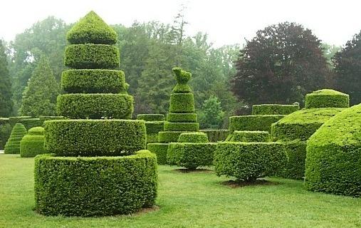 Живые изгороди треугольной формы