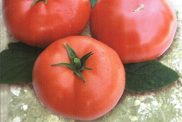 Сорт томата: Якиманка   f1