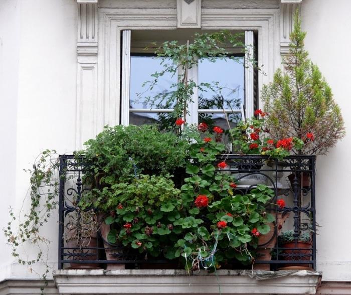 «Цветочное окно»