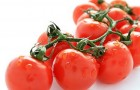 Сорт томата: Аист f1