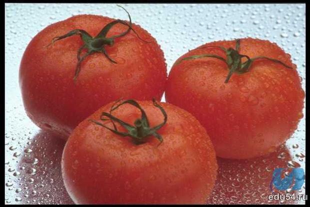 Сорт томата: Амадей   f1