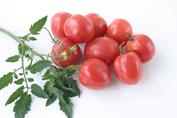 Сорт томата: Амулет