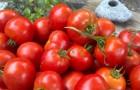 Сорт томата: Атрия f1