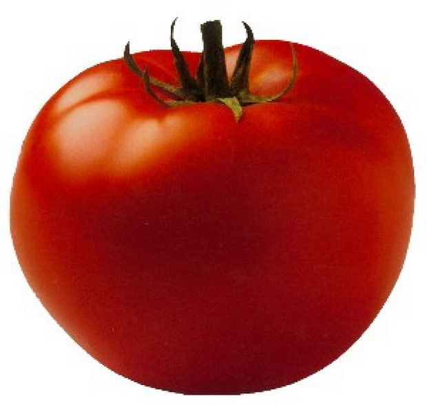 Сорт томата: Баритон   f1