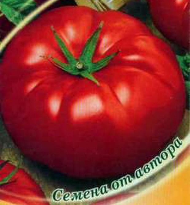 Сорт томата: Битюг   f1