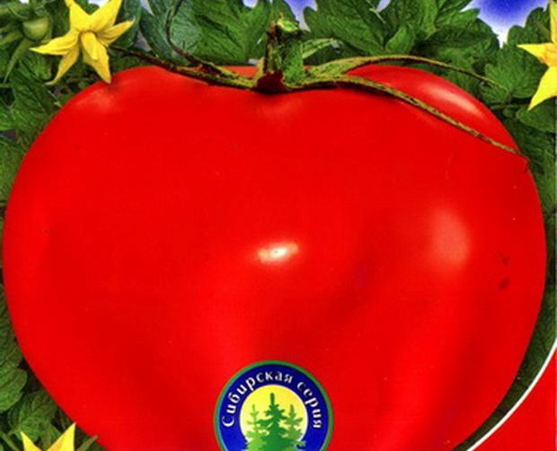 Сорт томата: Бизнес леди