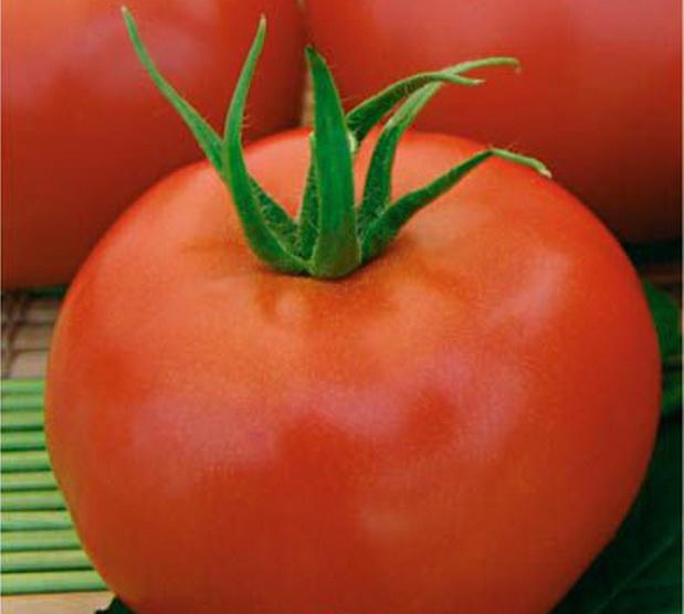 Сорт томата: Близняшки