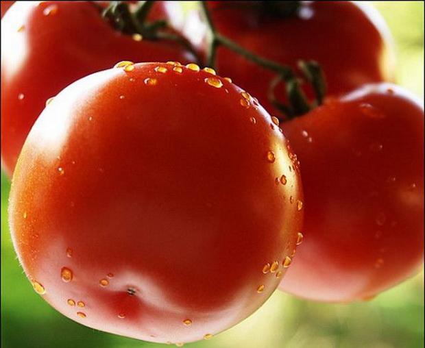 Сорт томата: Бон аппети