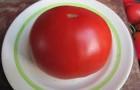 Сорт томата: Босфор