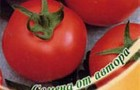 Сорт томата: Ботаник f1