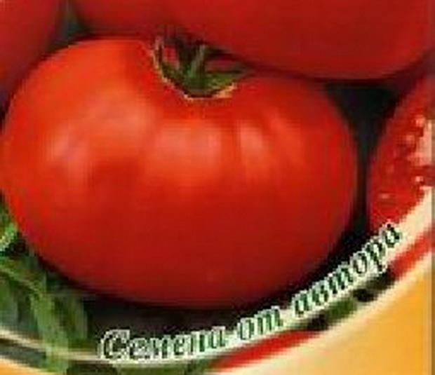 Сорт томата: Браво   f1