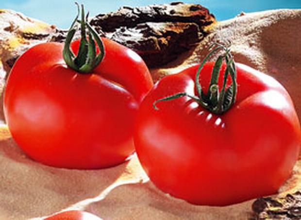 Сорт томата: Бруклин   f1