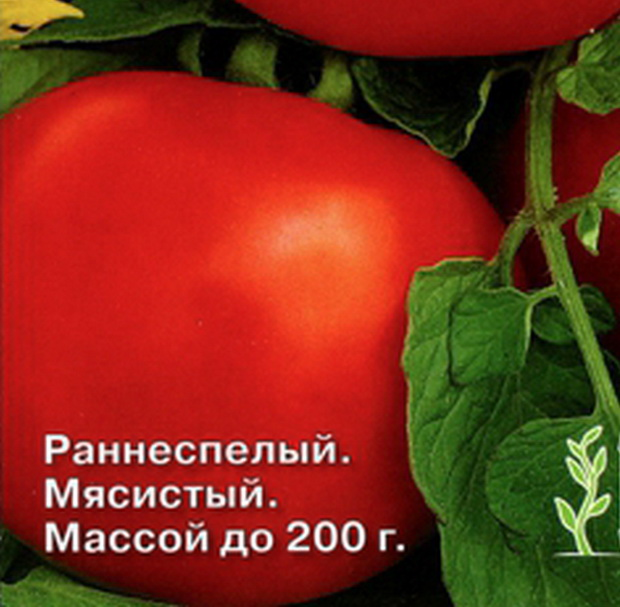 Сорт томата: Буржуй   f1