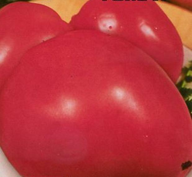 Сорт томата: Бычье сердце малиновое