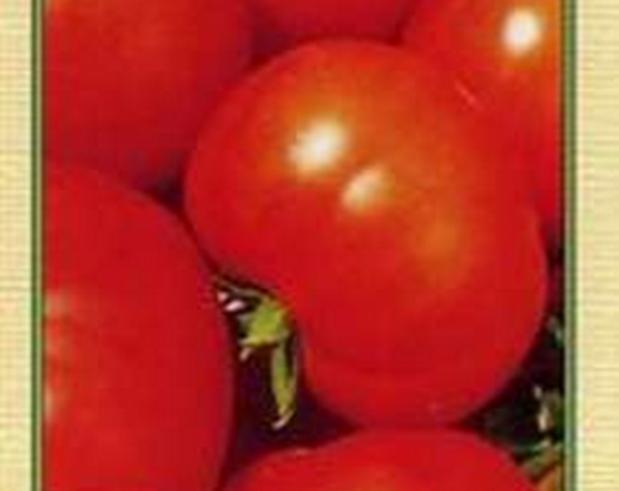 Сорт томата: Дарница   f1