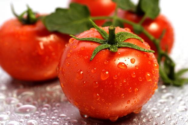 Сорт томата: Дайна   f1