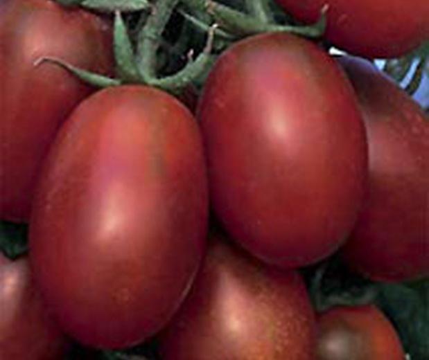 Сорт томата: Де барао черный