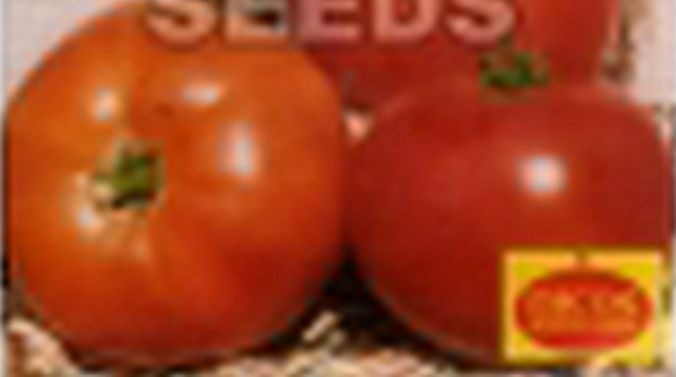 Сорт томата: Добродея   f1