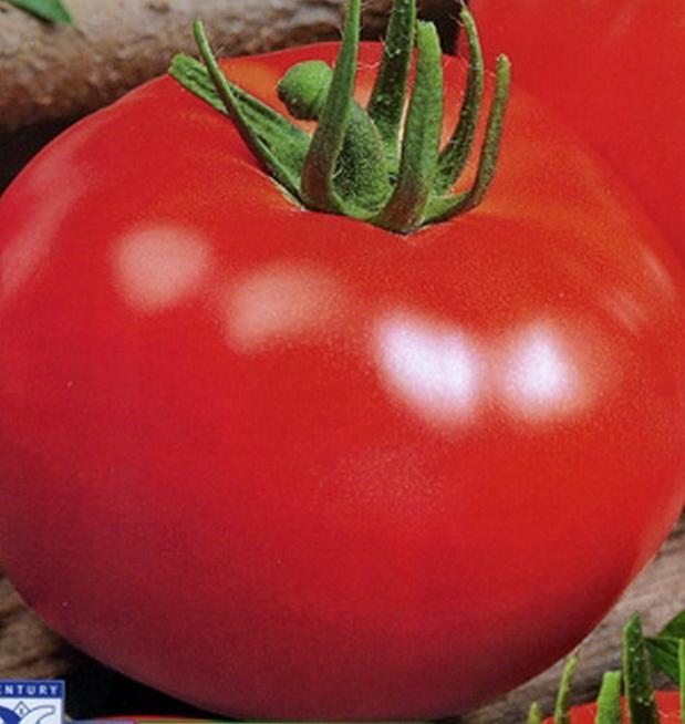 Сорт томата: Добрый   f1