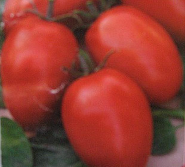 Сорт томата: Домашний