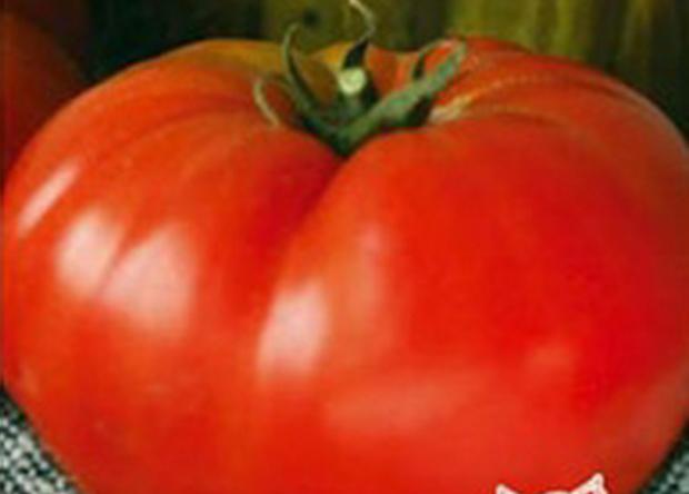 Сорт томата: Дорогой гость