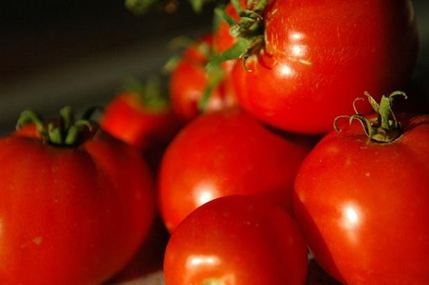 Сорт томата: Гордиппия   f1