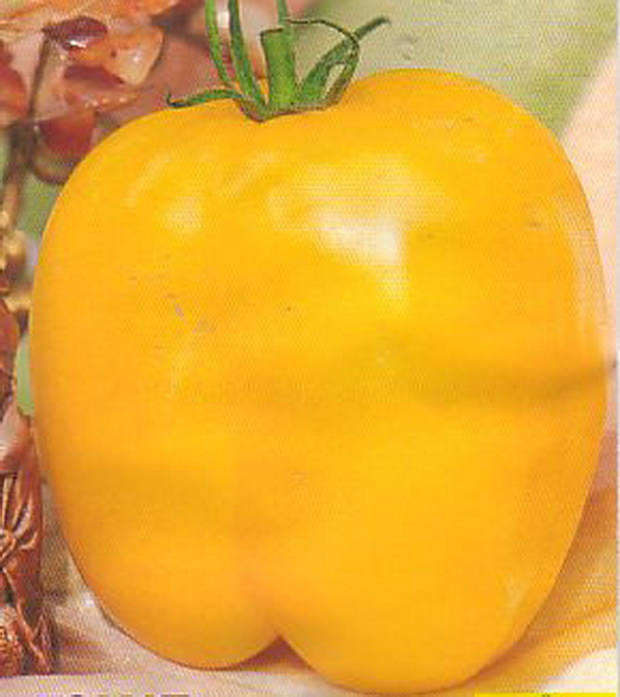 Сорт томата: Иллюзия