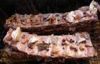 Как коптить сало и мясо