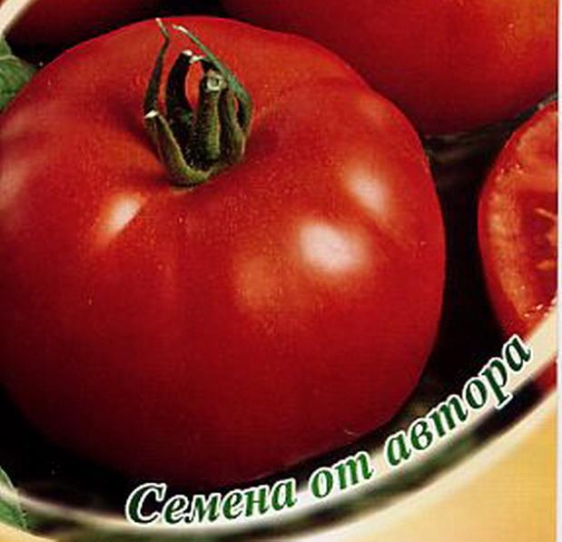 Сорт томата: Камчатка   f1