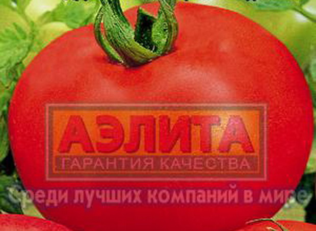 Сорт томата: Камея