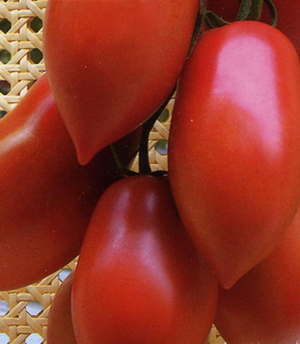 Сорт томата: Капия розовая