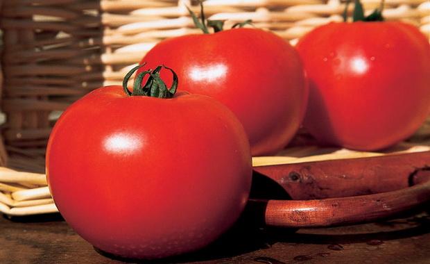 Сорт томата: Картьер   f1