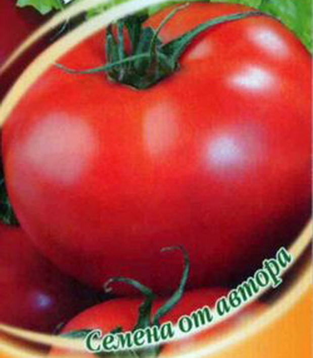 Сорт томата: Киржач   f1