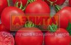 Сорт томата: Клепа