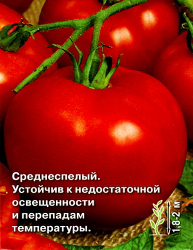 Сорт томата: Князь   f1