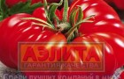 Сорт томата: Королевский