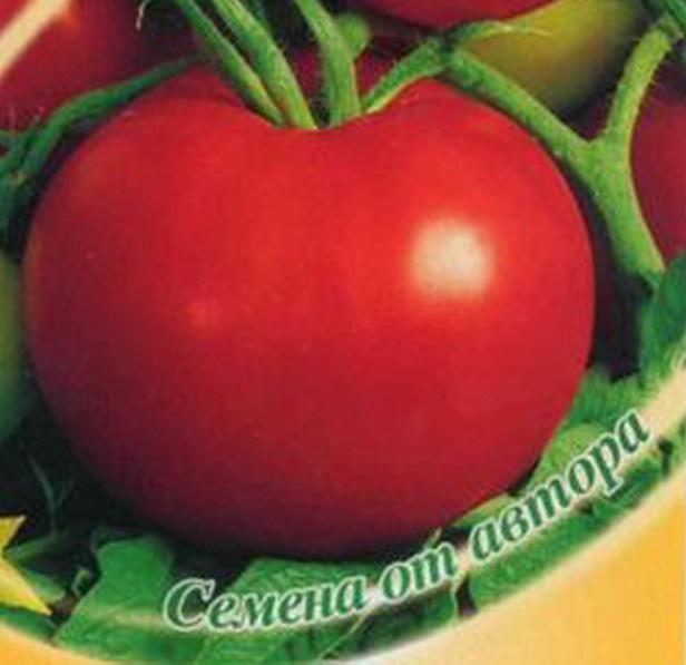 Сорт томата: Кострома   f1