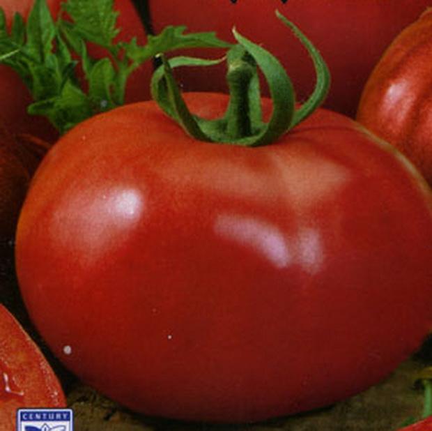 Сорт томата: Красно солнышко   f1