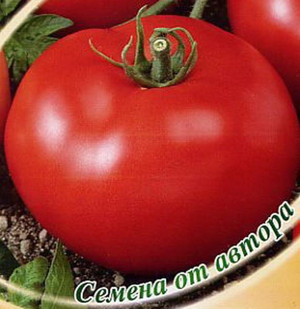 Сорт томата: Красногорский   f1
