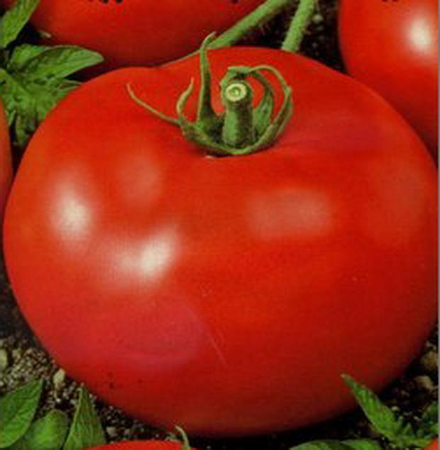 Сорт томата: Красные щечки   f1