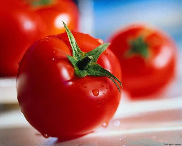 Сорт томата: Краса грядки