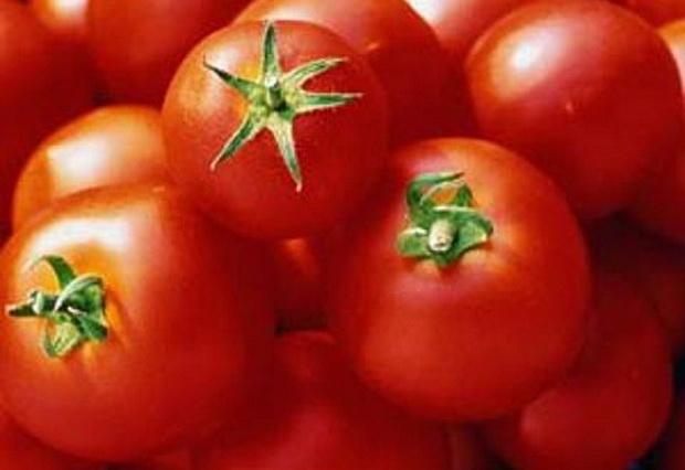 Сорт томата: Кубань